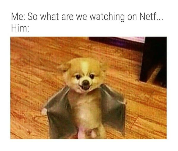 Netflix and Chill, funny Netflix and chill memes, unwholesome memes, Disney plus and thrust, streaming service, jokes about hooking up, what does Netflix and chill mean, funny tweets