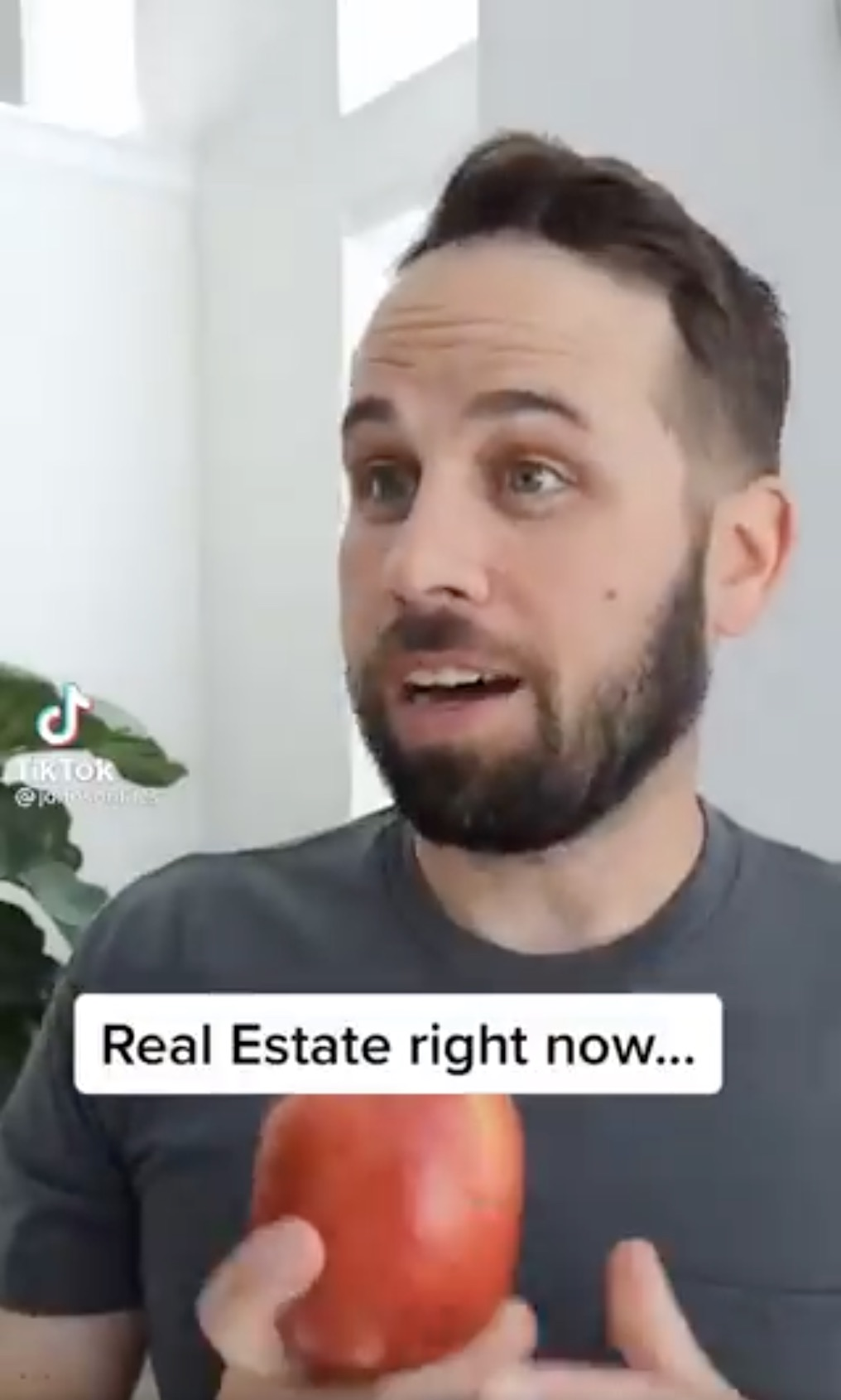 real estate tiktok
